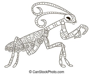 Mantis Coloring vector for adults