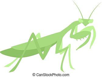 Creative design of mantis