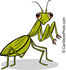 Cartoon Illustration of Funny Mantis Insect Character