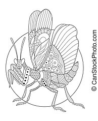 Mantis insect coloring book vector illustration