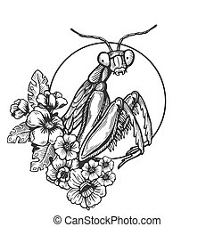Mantis insect engraving vector illustration. Scratch board...