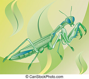 Insect mantis is going eat in grass, illustration