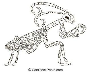 mantis, kleuren, vector, voor, volwassenen