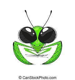Mantis vector illustration - mantis sketch on white...