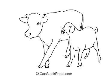 manual, adha, sheep, vector, empate, bosquejo, slaughted, idul, permitido, ser, vaca