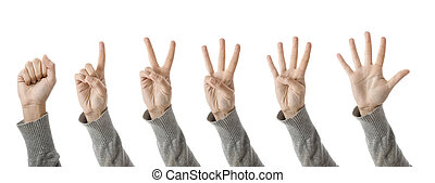 Outline of hands counting from one to five - isolated on white