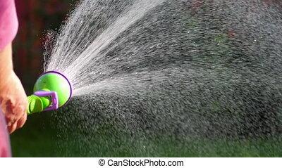 Manual garden sprayer - Woman watering the lawn manual...