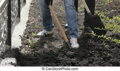 manual labor, treatment of the soil with a shovel, man digging