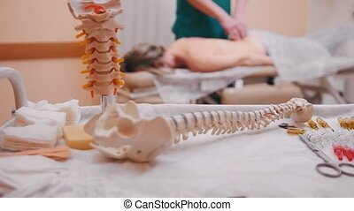 Manual therapist massaging a young woman lying on a massage table, pushing on the back, spine model in the foreground