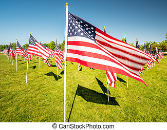 Many American flags blosing in the wind on poles