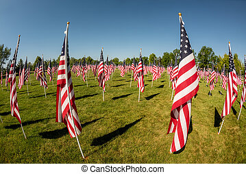 Many American flags in a park moving with the wind
