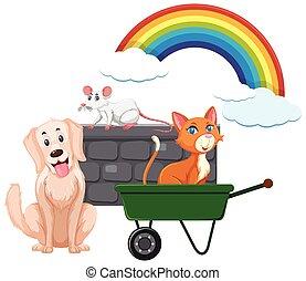 Many animals and rainbow on white background