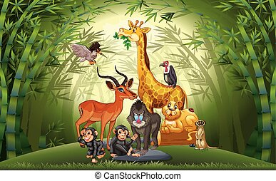 Many animals in bamboo forest