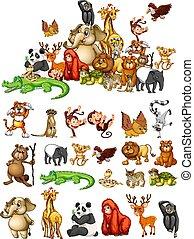 Many animals on white background