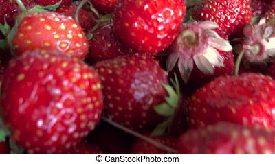 many berries red Strawberry - many berries beautiful red...