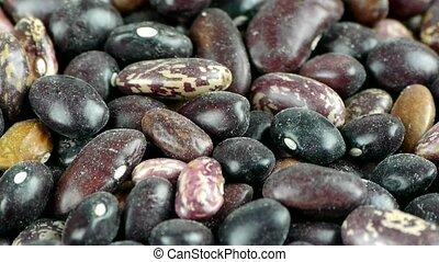 many black beans & flower beans