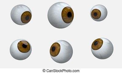 many brown eyes balls rotation, 3d animation loop