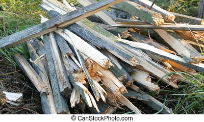 Many chopped firewood lie on a grass - Many chopped firewood...