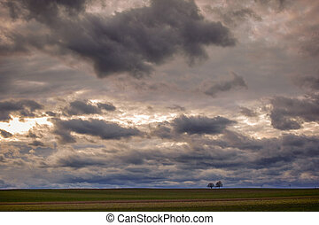 many clouds on the sky at a flat landscape with two trees