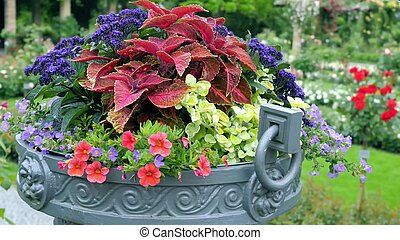 Many different colors in a large outdoor pots