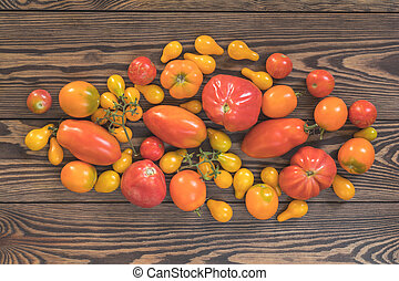 Many different red orange yellow tomatoes on dark wooden surface.