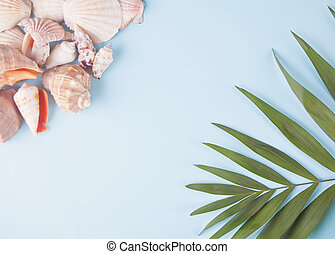 Many different seashells and tropical palm leaf on the blue background. Top View. Copy space.