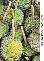 Many durians ,fruit background.