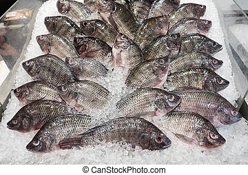 many fish on ice in super market