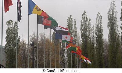 flags of the world - many flags of the world .