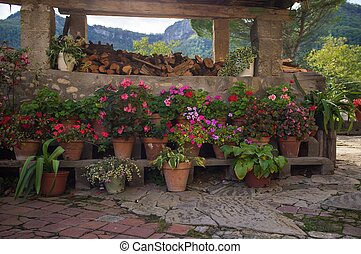 Many flowers pots outdoors