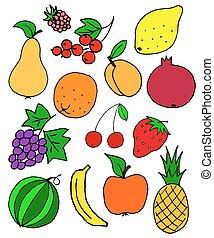 fresh fruit doodle, sketch vector background