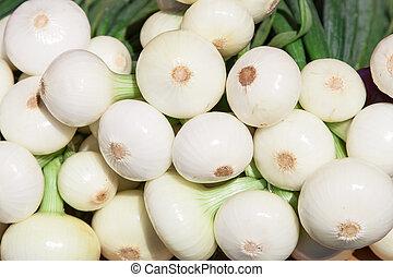many fresh onion