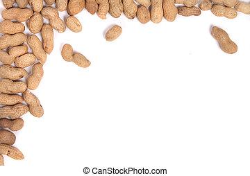 peanuts - many fresh peanuts on the white background