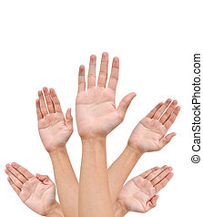Many Hands raise high up on white background