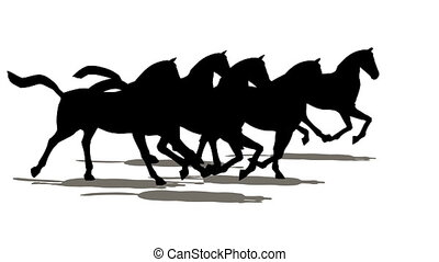 Many horses silhouette