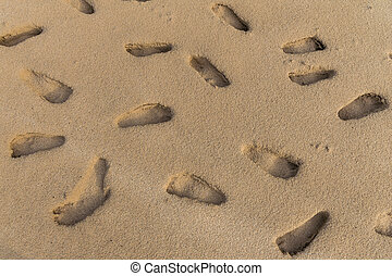Many human footprints on the beach sand