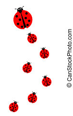 Many Ladybugs - Background image with many different sized...