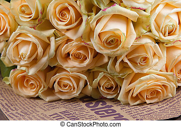 Many natural beige roses background