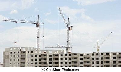 Many  of cranes.  Tower cranes agai