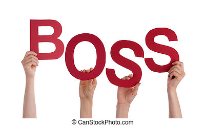 Many People Hands Holding Red Word Boss - Many Caucasian...