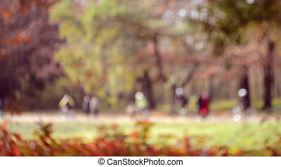 Many people walk in the park. Blurred Background