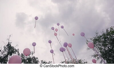 Many pink purple balloons fly into the sky on wedding day outdoors