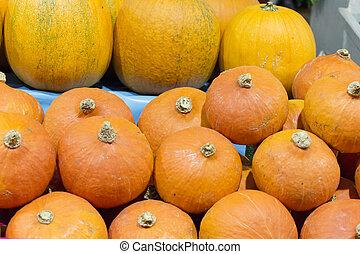 Many pumpkins at market