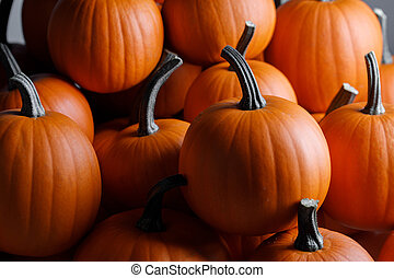 Many pumpkins collection