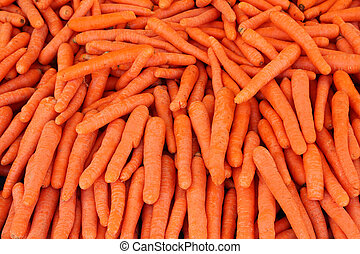 ripe carrot - food background - many ripe carrot - food...