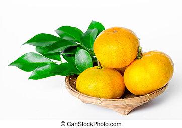 Many ripe orange fruit and leaves.