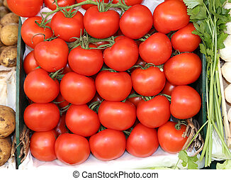 ripe red tomatoes for sale in the fruit and vegetable market