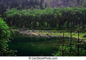 many rocks on the shore of lake