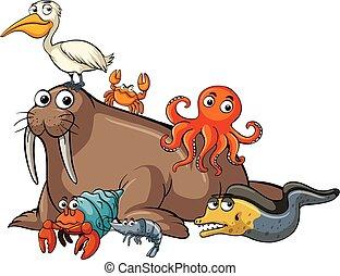 Many sea animals on white background
