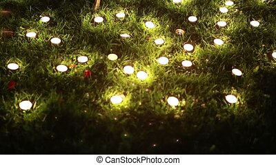 many small candles in the night, in the green grass